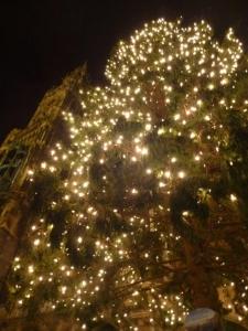 tree_20131204220841f9e.jpg