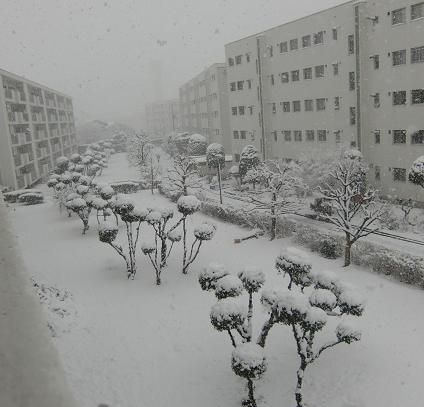 雪にうもれる団地
