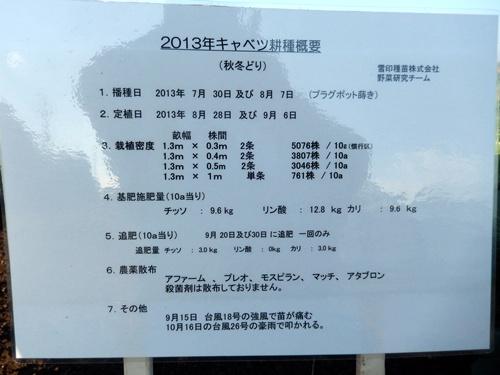 2013.11.26 秋のフィールドディ(千葉・雪印種苗) 032