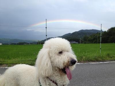 虹とコースケ