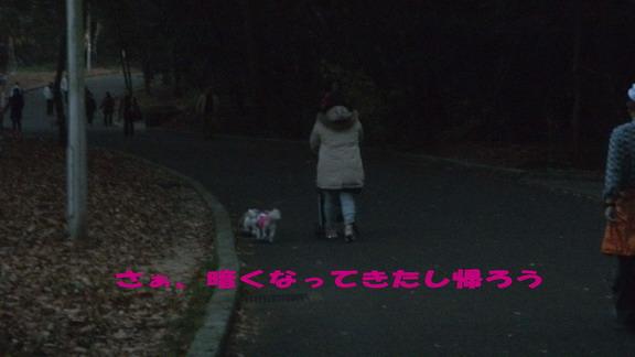DSCF9360ブログ08