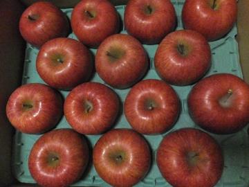 りんご長野