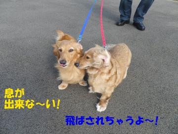 沖縄2日目6