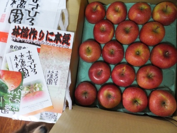 りんご、まさひろ農園