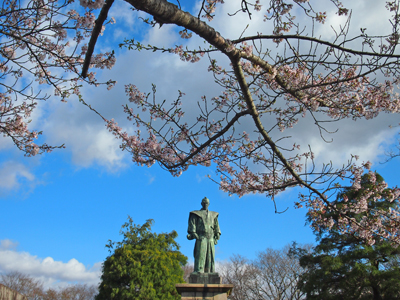 2013.4.8松ヶ岡公園4