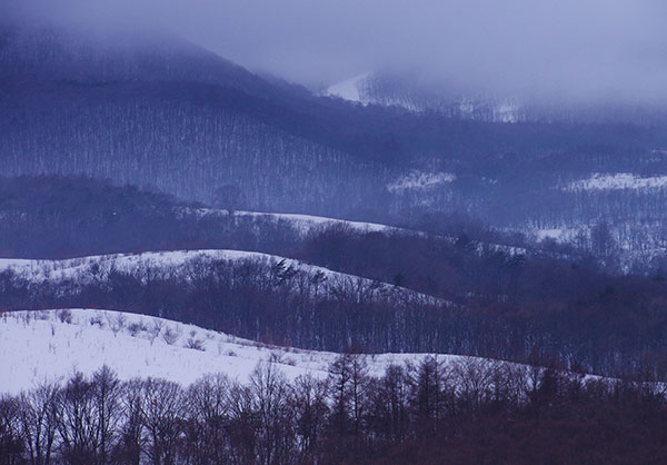 春子谷地の霧
