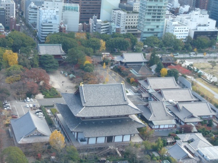 東京タワー 大展望台からの眺望 3