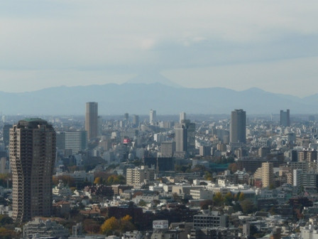 東京タワー 大展望台からの眺望 6