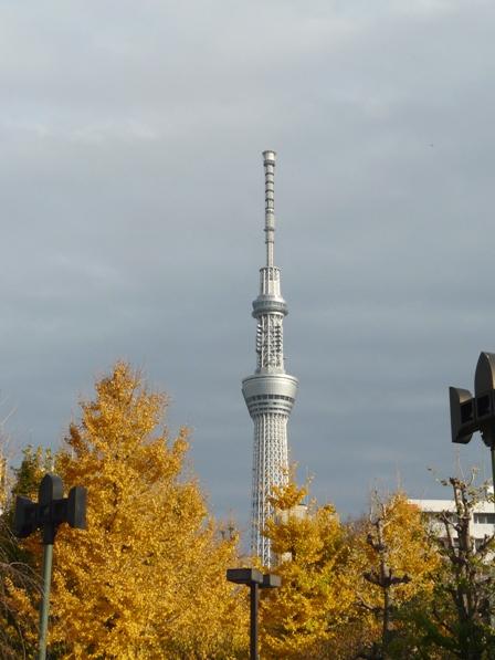 浅草寺から見たスカイツリー 1