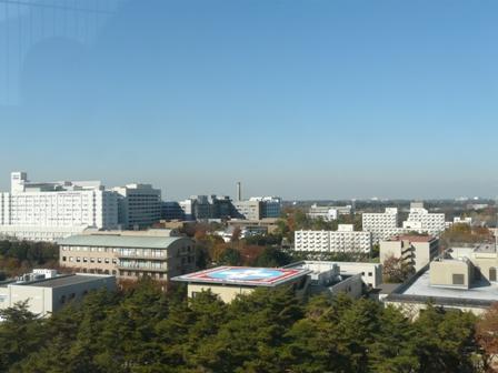 つくば 松見公園 展望塔からの眺め 2