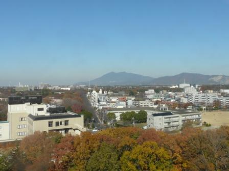 つくば 松見公園 展望塔からの眺め 1
