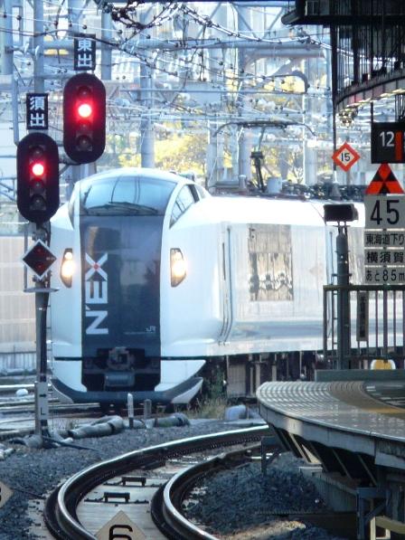 JR東日本 E259系電車 「成田エクスプレス」