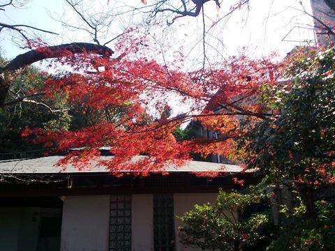2013-11-162011_32_59.jpg