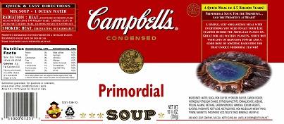 Primordial Soup
