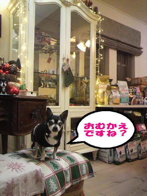22年クリスマス