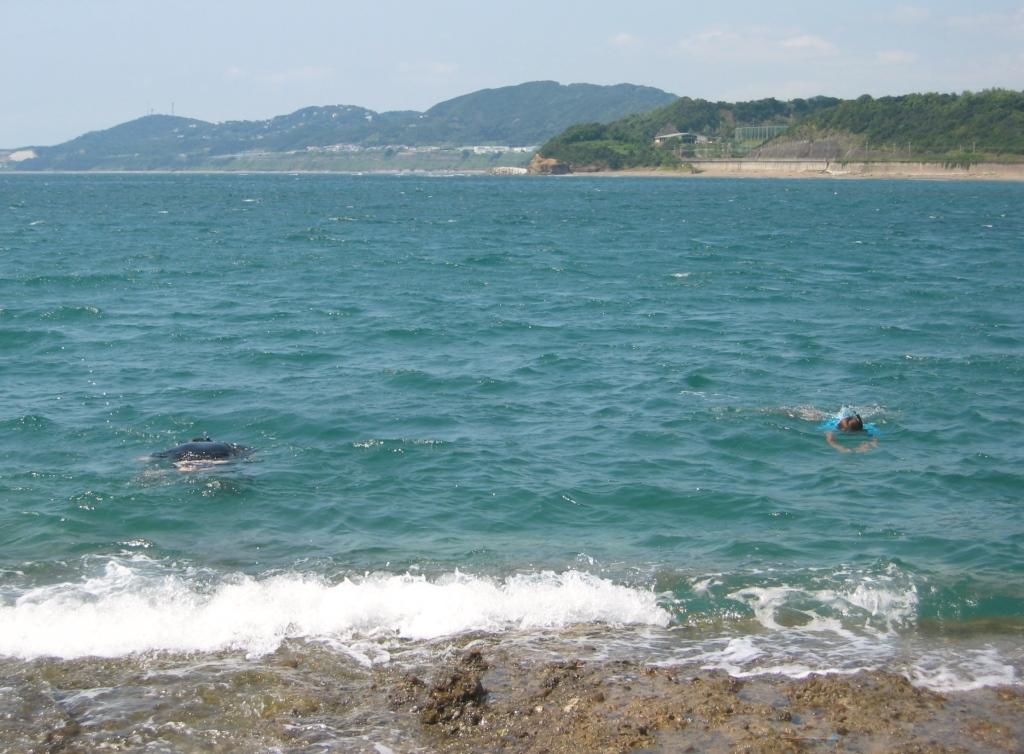 千里の浜 (7)