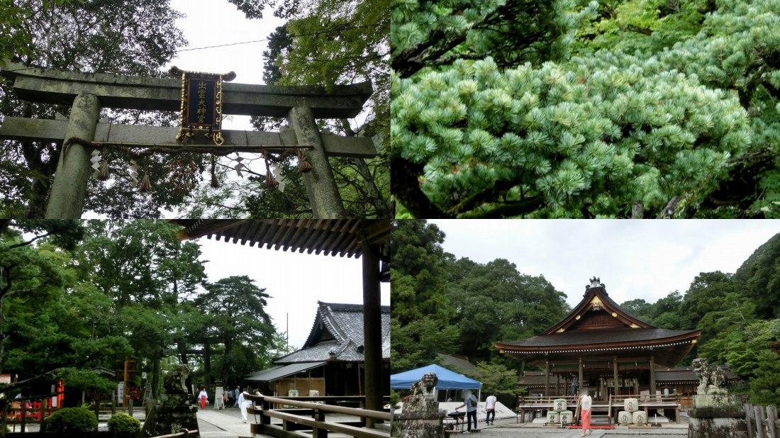 kameokaizumo1.jpg
