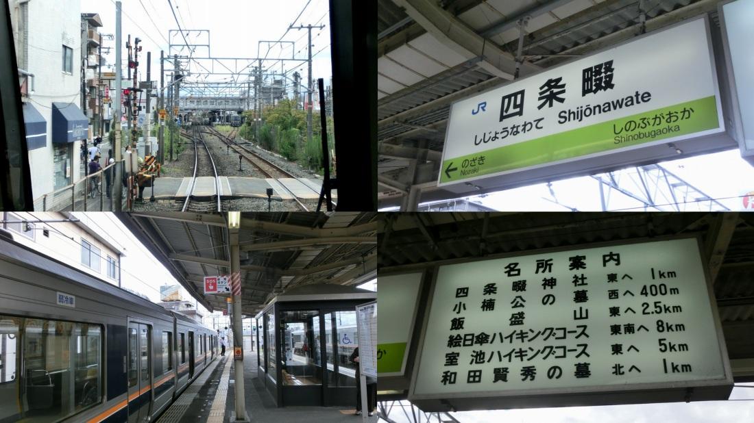 sijounawate1_20141103105352486.jpg