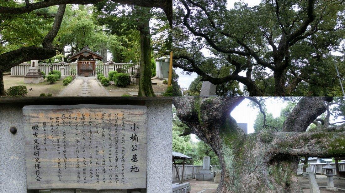 sijounawate5.jpg