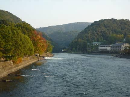 宇治川の中の島から見ると紅葉もちらほらと...