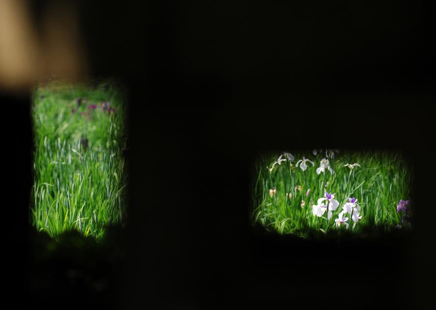 菖蒲園-(18)灯篭の隙間から