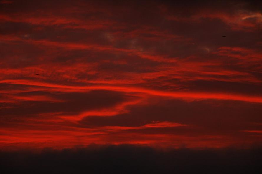 2011-10-30-赤い朝