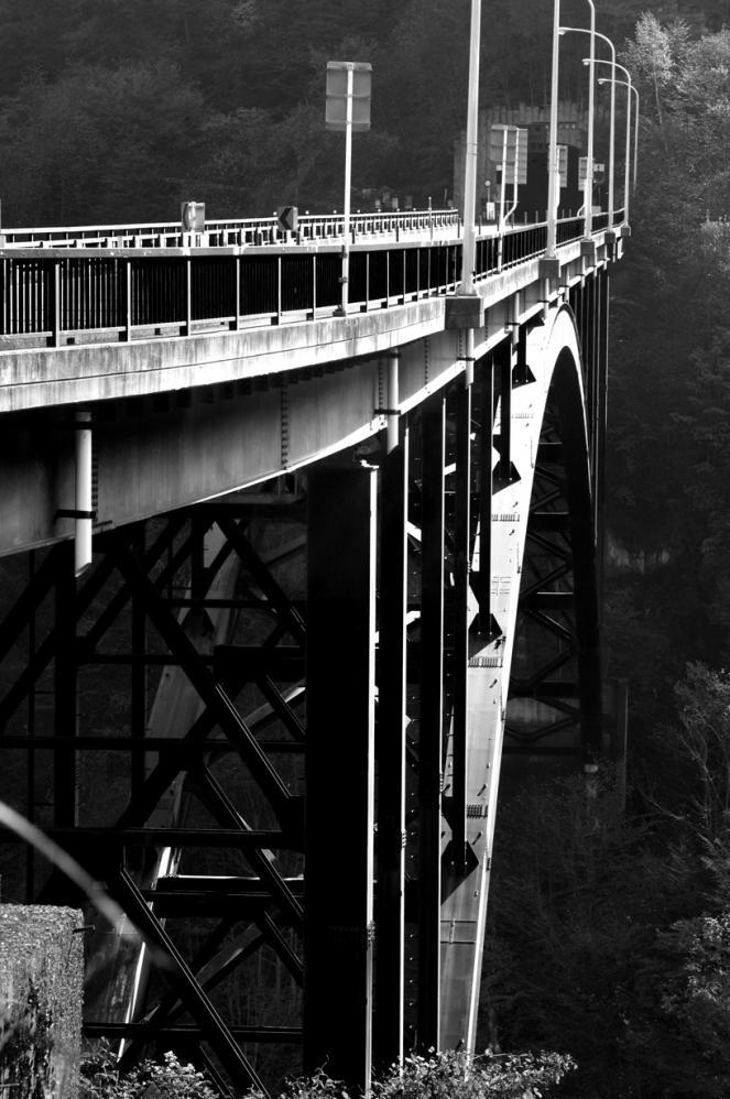 2011-10-31-赤い橋の白黒