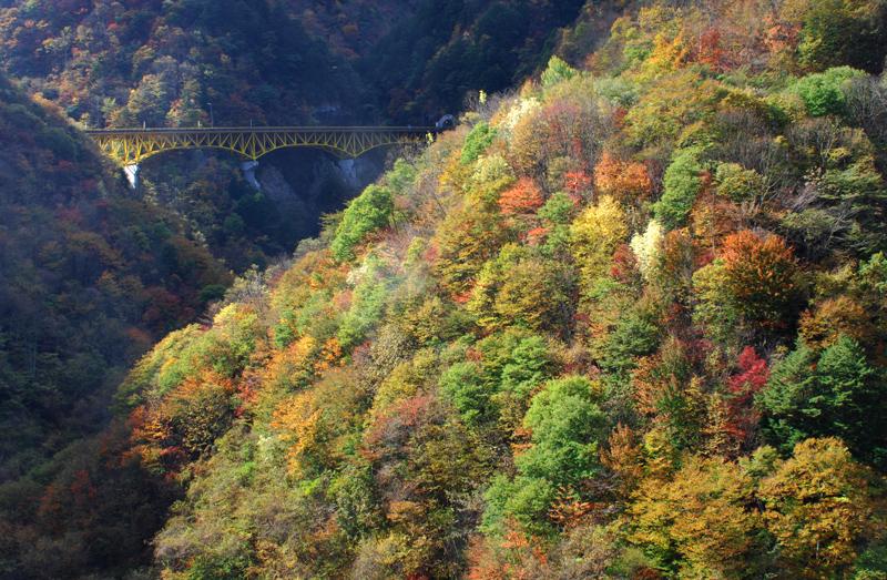 2011-10-31-赤い橋@