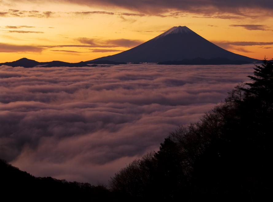 2011-11-12-水ヶ森林道の朝_e