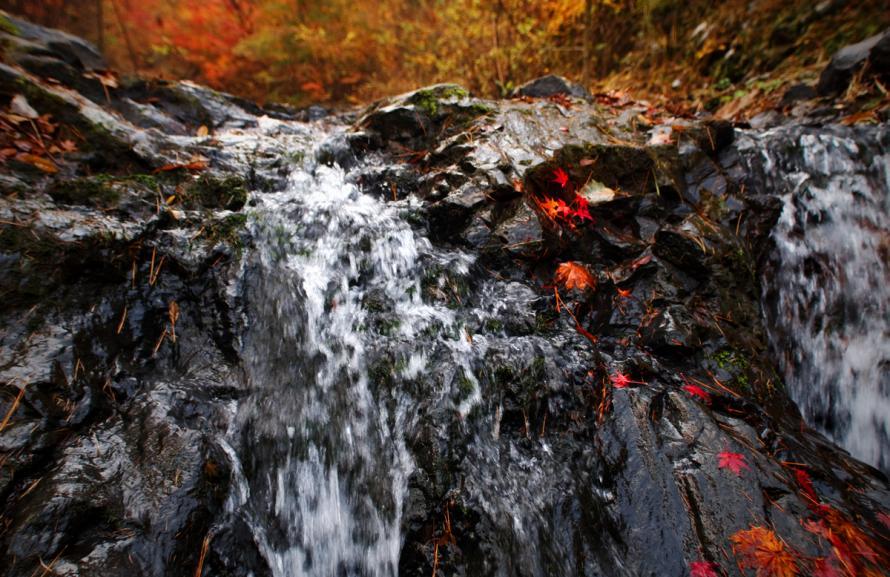 2011-11-14-富士吉田の小滝-(