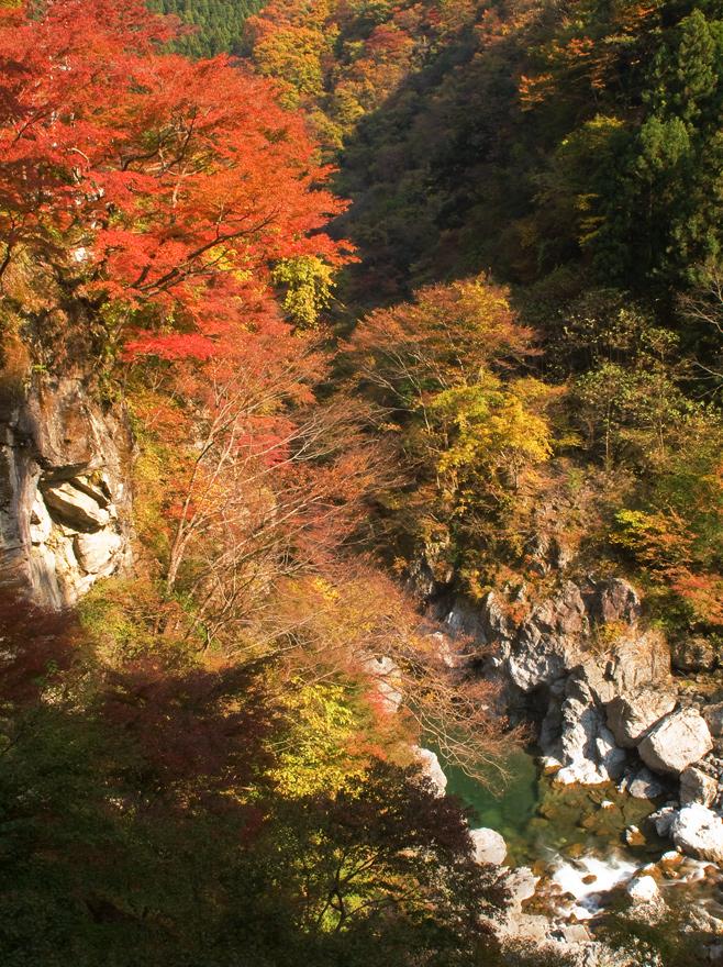 2011-11-14 金蔵落-(135)