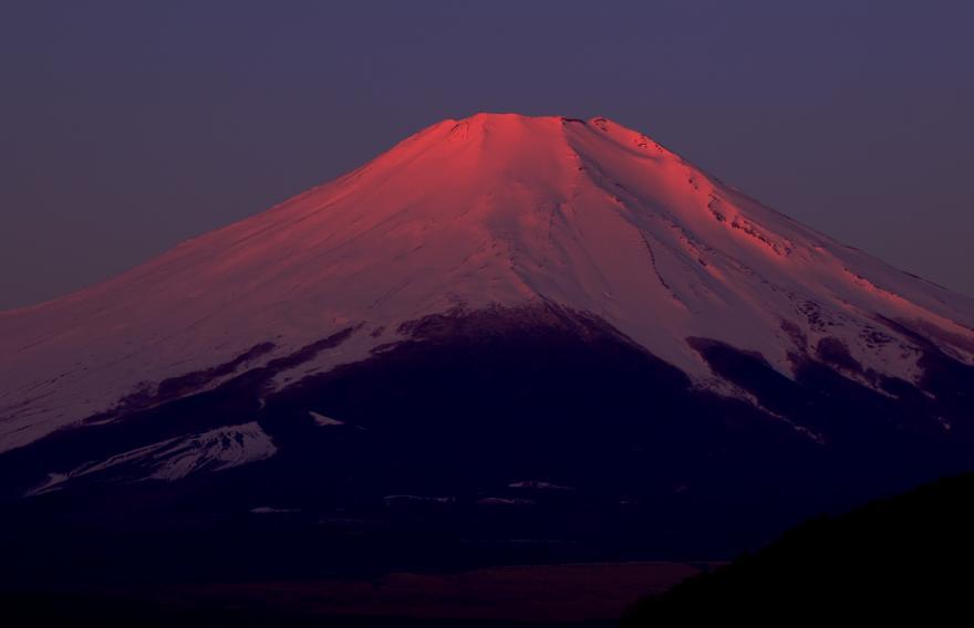 山中紅(219)s