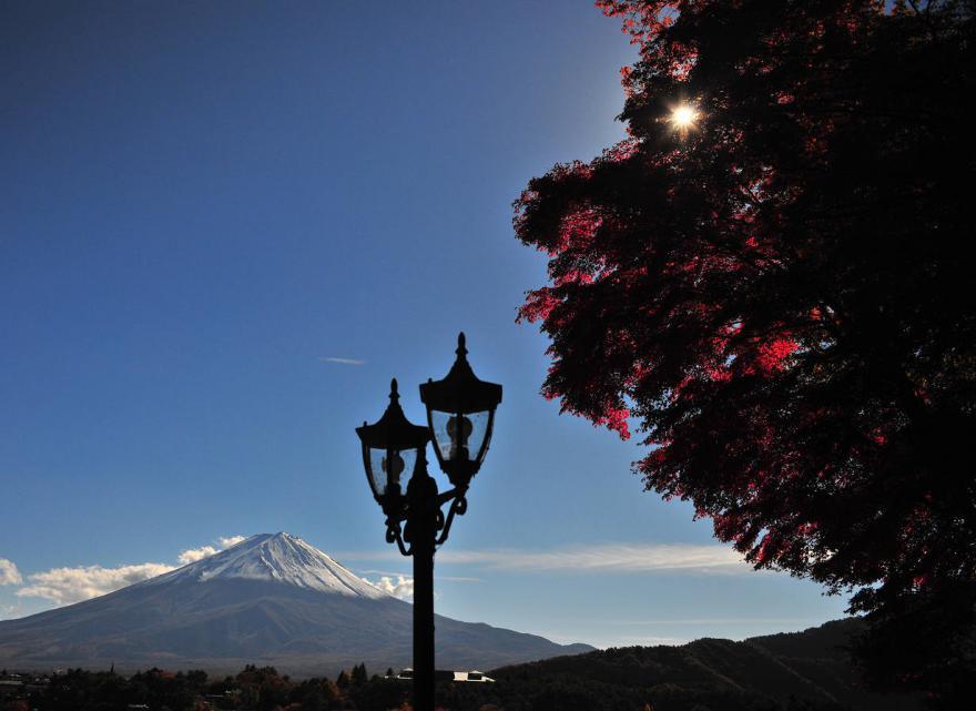 2012 11 10* 河口湖紅葉 (142)s