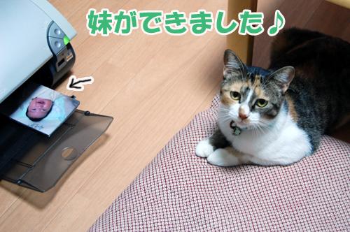 20141104d.jpg