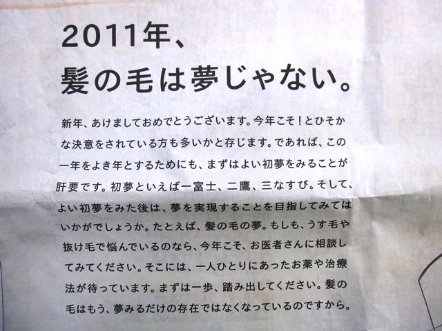 20111月 043