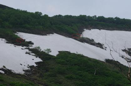 雪渓-01_