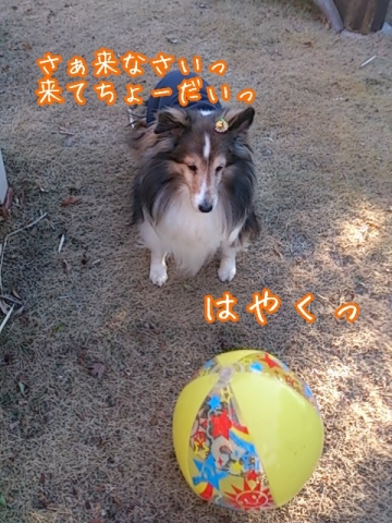 2014-01-06-21-26-58_deco.jpg