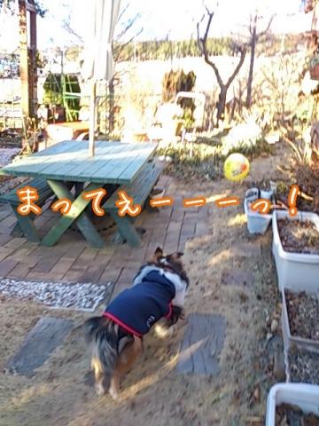 2014-01-06-21-29-21_deco.jpg