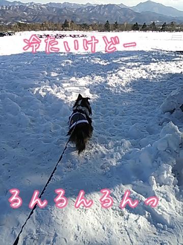 2014-01-13-15-13-53_deco.jpg