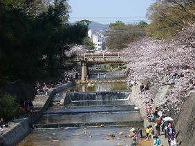 夙川公園3.JPG