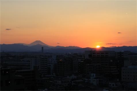 20110213_0190.jpg