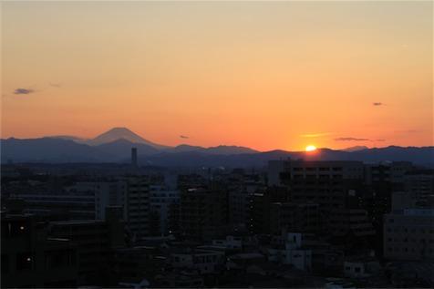 20110213_0193.jpg