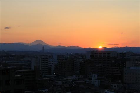 20110213_0195.jpg