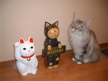 招福猫さんと3
