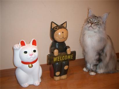 招福猫さんと4