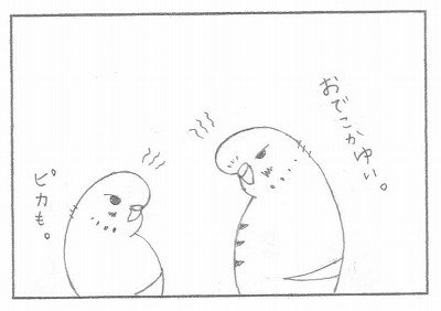 個鳥情報に注意 5