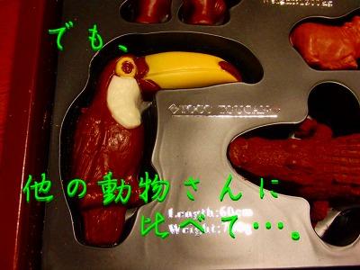 ZOOLOGYのチョコ14
