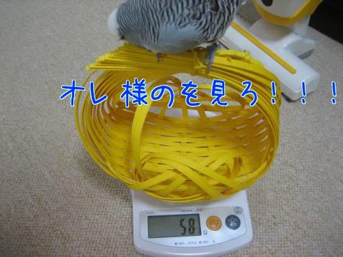 体重測定④