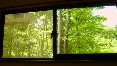 ソファー個室からの眺め