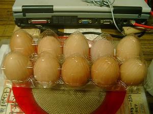 ボリスブラウン赤卵、Lサイズ10個200円